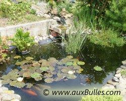Bassin de jardin la visite du bassin de jardin de pascal - Foto de bassin de jardin avec cascade ...