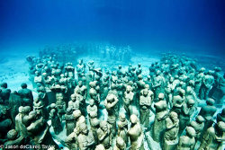 'The silent evolution' une oeuvre de Jason deCaires Taylor